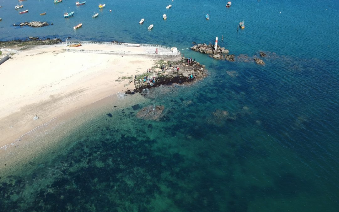Departamento de Oceanografía UdeC involucrado en transformar el Gran Concepción en una ciudad oceánica