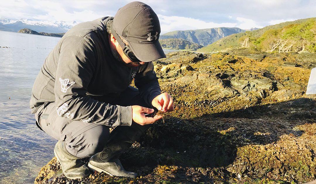 Científico y académico DOCE UdeC, integra equipo galardonado por investigación sobre algas pardas