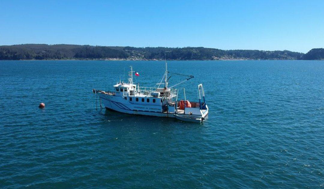UdeC es parte de proyecto global que contribuirá a conservar el océano
