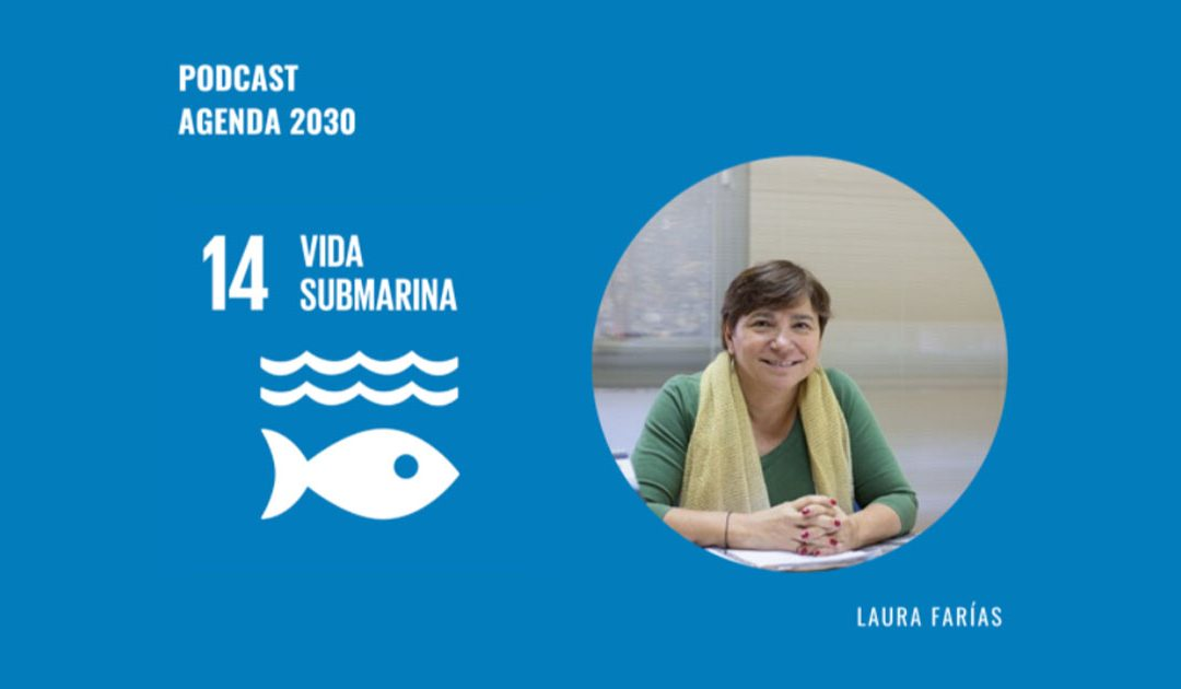 Agenda 2030 ODS 14: Laura Farías analiza la situación de los océanos y las costas chilenas